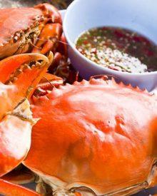 Những món ngon từ cua biển